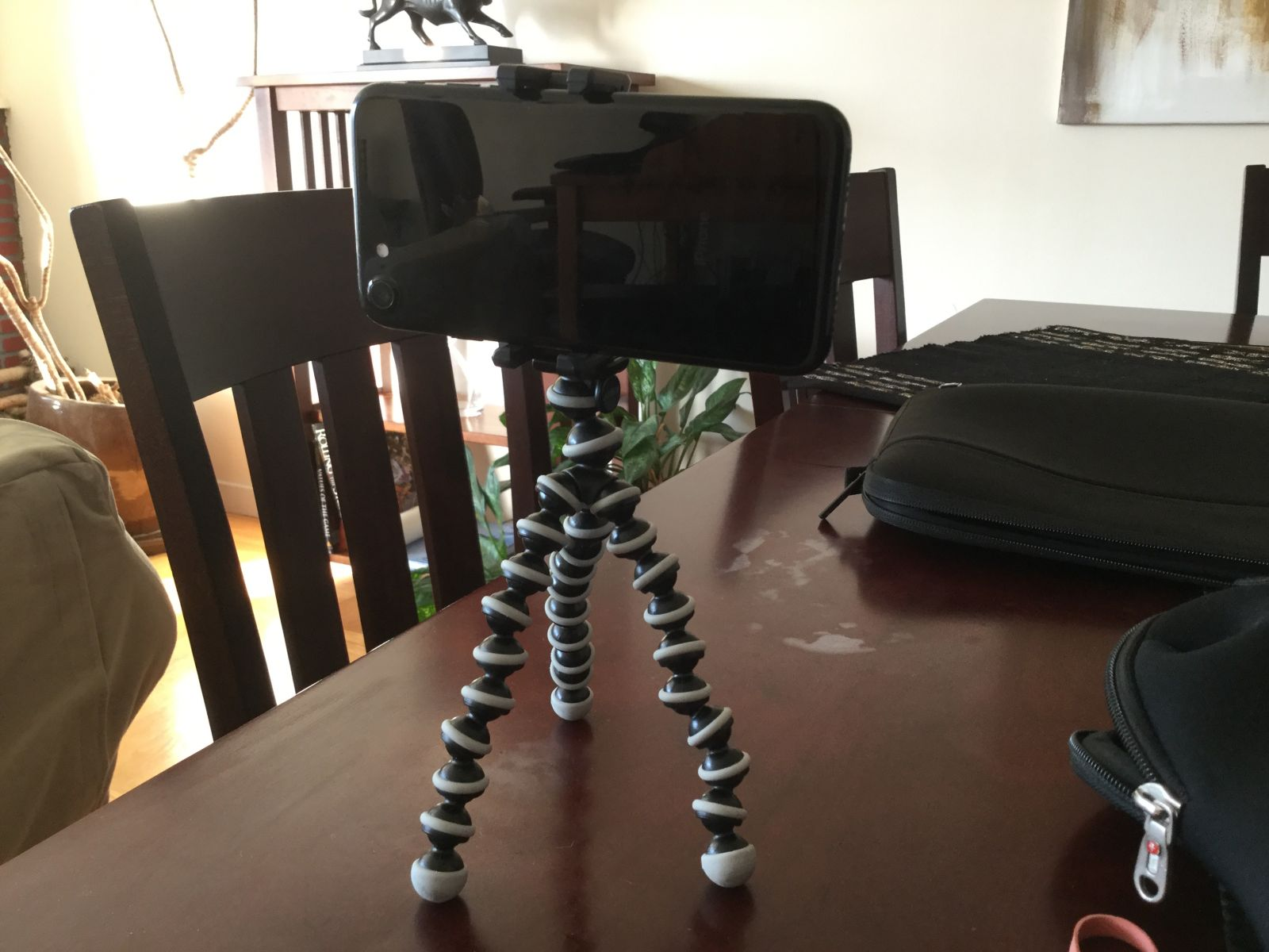 Smartphone with tripod and harness